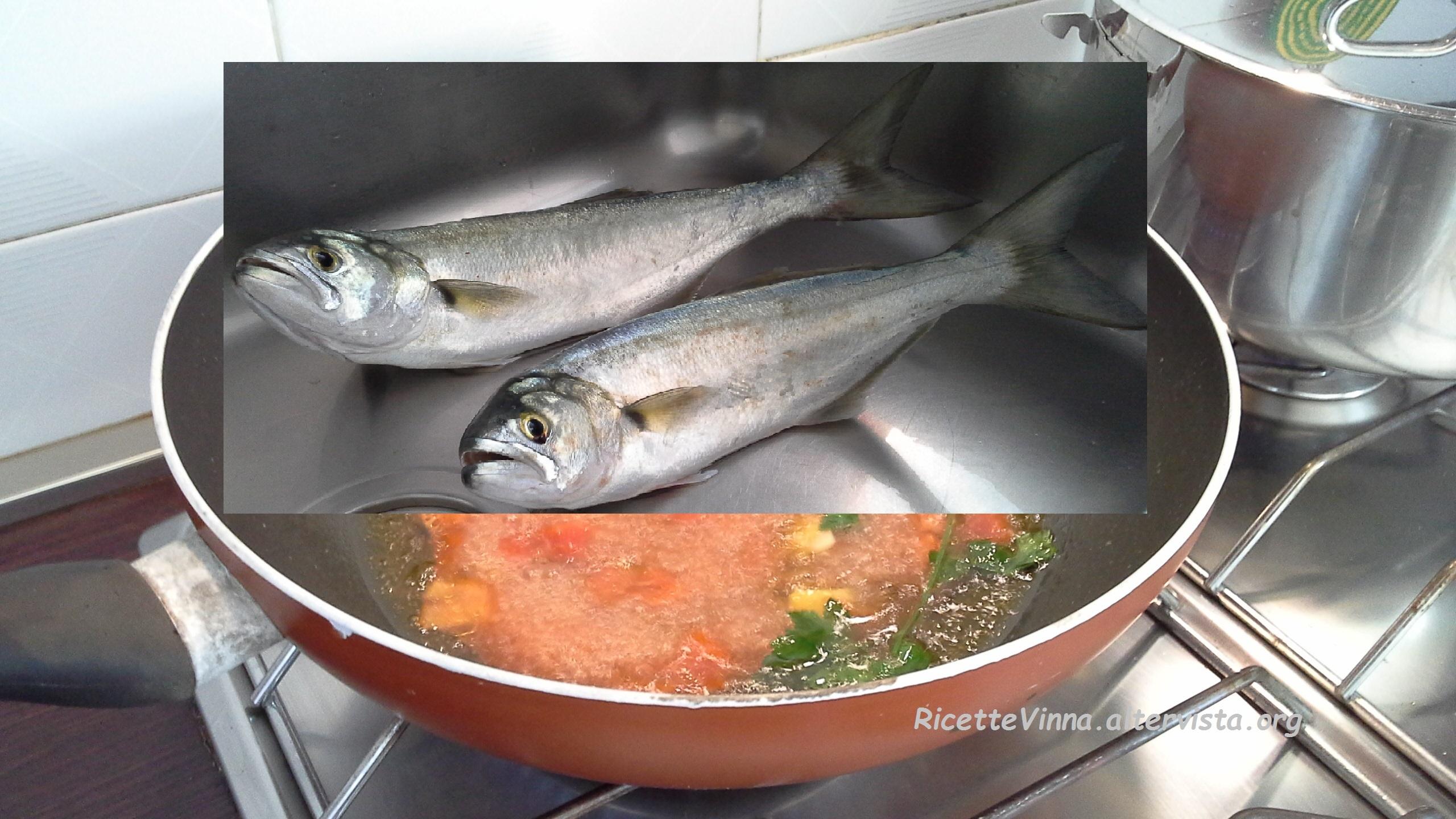 Pesce serra all 39 acqua pazza ricette vinna - Come cucinare il pesce serra ...